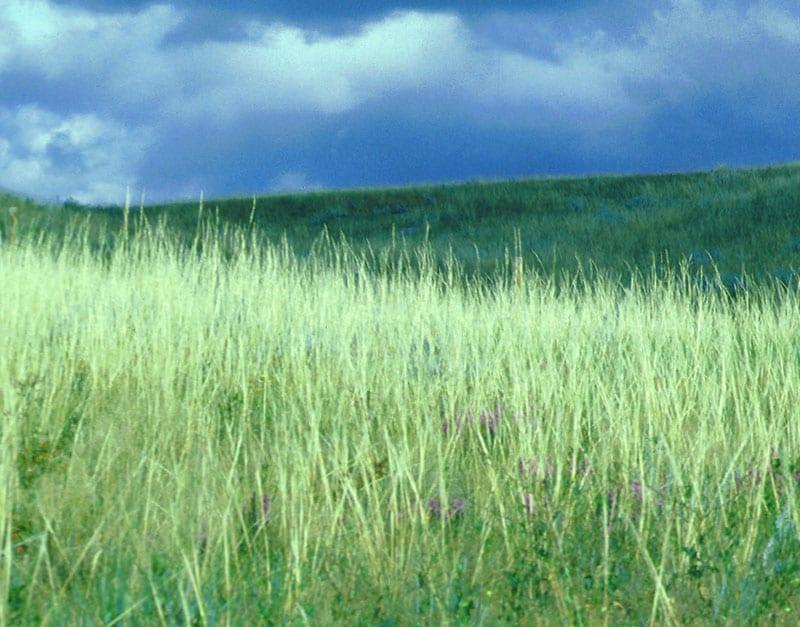 photo_land_use_planning